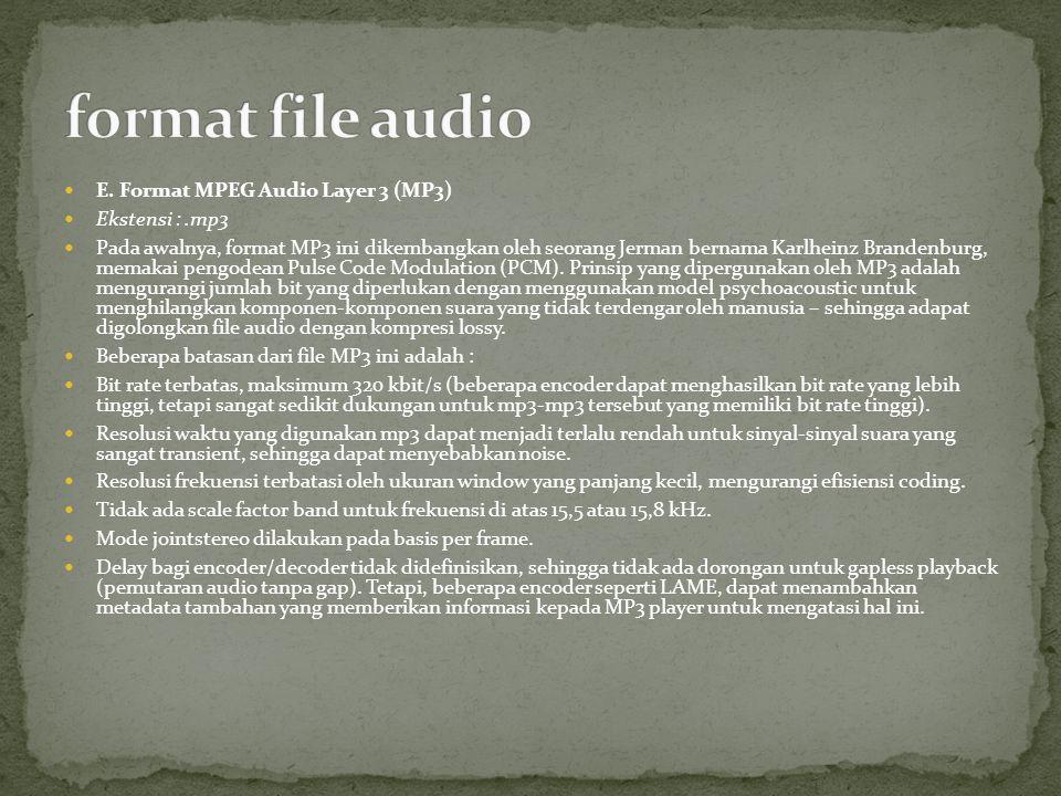 E. Format MPEG Audio Layer 3 (MP3) Ekstensi :.mp3 Pada awalnya, format MP3 ini dikembangkan oleh seorang Jerman bernama Karlheinz Brandenburg, memakai