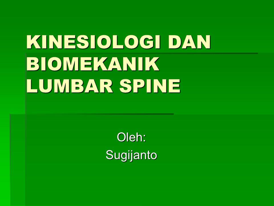 Lumbopelvic rhythm  Aktifitas posisi berdiri terjadi grk proporsional antara Lumbar spine, Sacroiliac dan Hip joint.