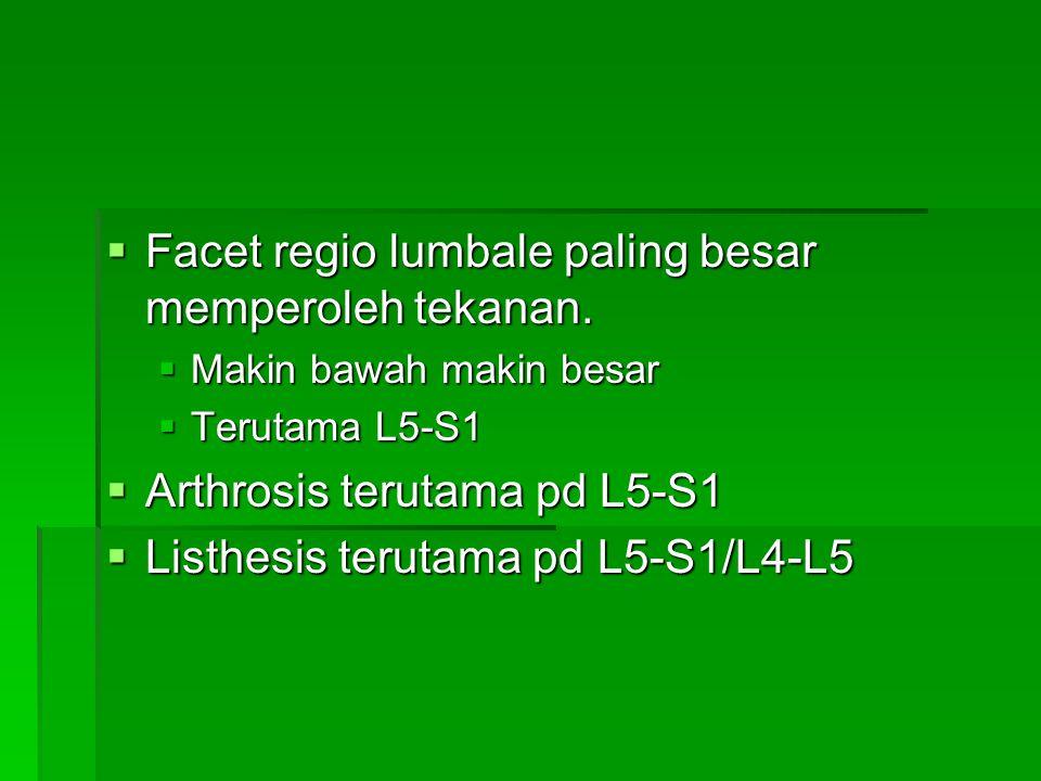  Facet regio lumbale paling besar memperoleh tekanan.  Makin bawah makin besar  Terutama L5-S1  Arthrosis terutama pd L5-S1  Listhesis terutama p