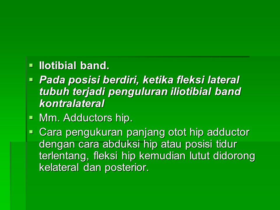  Ilotibial band.  Pada posisi berdiri, ketika fleksi lateral tubuh terjadi penguluran iliotibial band kontralateral  Mm. Adductors hip.  Cara peng