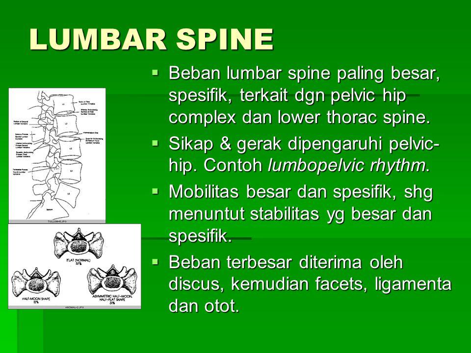 LUMBAR SPINE  Beban lumbar spine paling besar, spesifik, terkait dgn pelvic hip complex dan lower thorac spine.  Sikap & gerak dipengaruhi pelvic- h