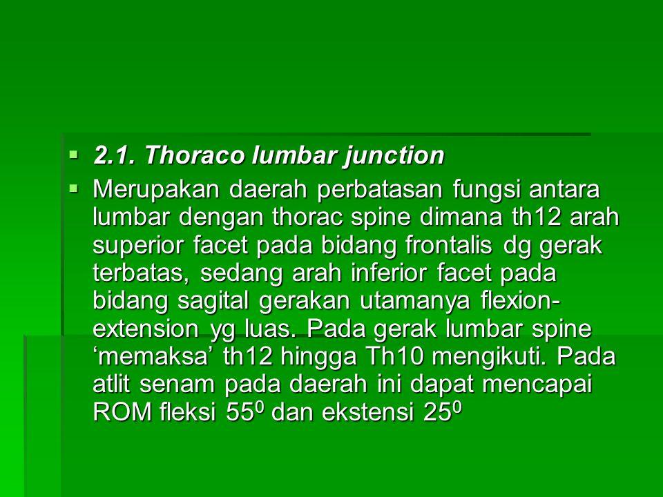  2.1. Thoraco lumbar junction  Merupakan daerah perbatasan fungsi antara lumbar dengan thorac spine dimana th12 arah superior facet pada bidang fron