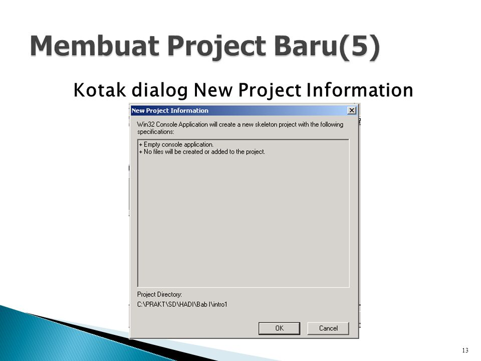 Kotak dialog New Project Information 13