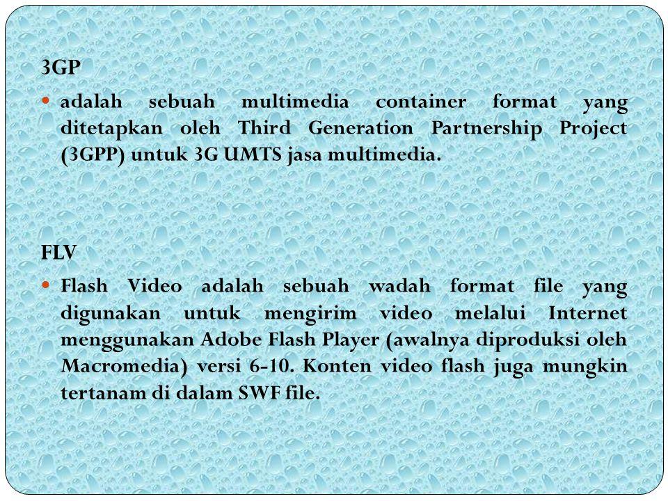 3GP adalah sebuah multimedia container format yang ditetapkan oleh Third Generation Partnership Project (3GPP) untuk 3G UMTS jasa multimedia. FLV Flas