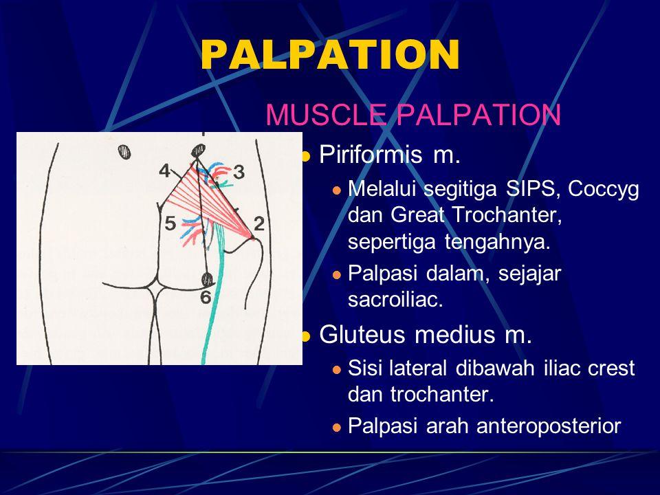 PALPATION MUSCLE PALPATION Piriformis m. Melalui segitiga SIPS, Coccyg dan Great Trochanter, sepertiga tengahnya. Palpasi dalam, sejajar sacroiliac. G