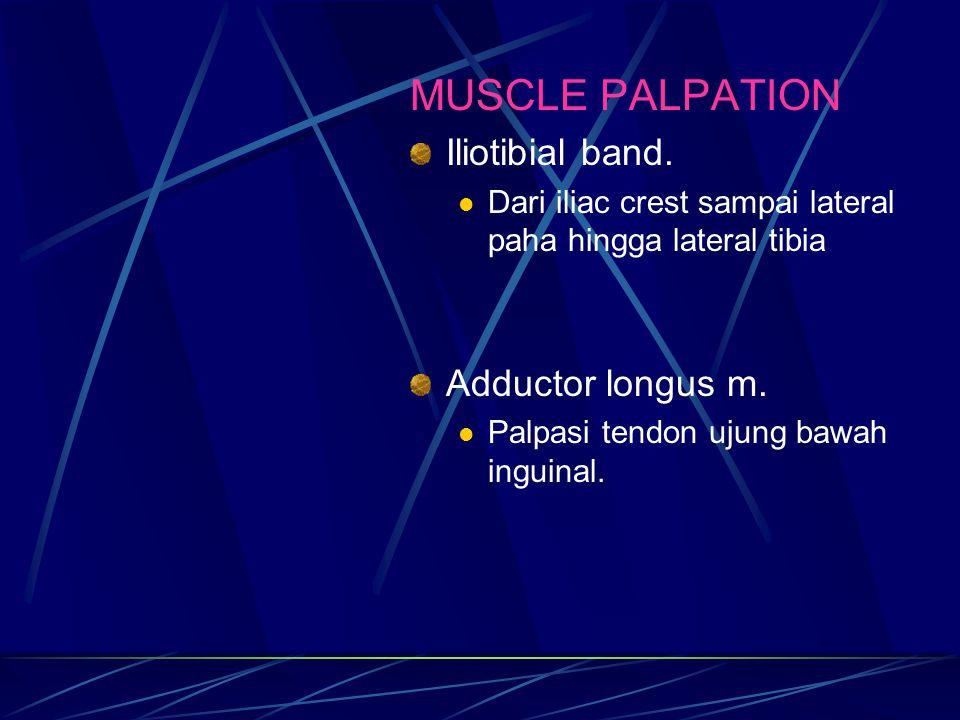 MUSCLE PALPATION Iliotibial band. Dari iliac crest sampai lateral paha hingga lateral tibia Adductor longus m. Palpasi tendon ujung bawah inguinal.