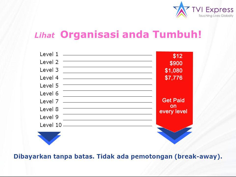 Lihat Organisasi anda Tumbuh! Level 1 Level 2 Level 3 Level 4 Level 5 Level 6 Level 7 Level 8 Level 9 Level 10 Dibayarkan tanpa batas. Tidak ada pemot