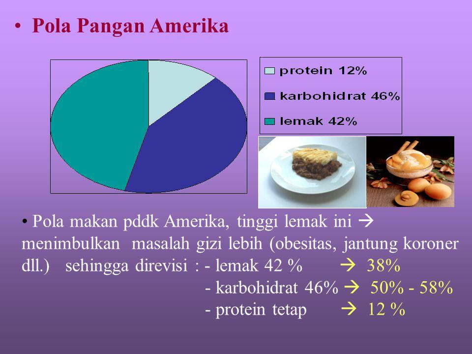 Pola Pangan Amerika Pola makan pddk Amerika, tinggi lemak ini  menimbulkan masalah gizi lebih (obesitas, jantung koroner dll.) sehingga direvisi : -
