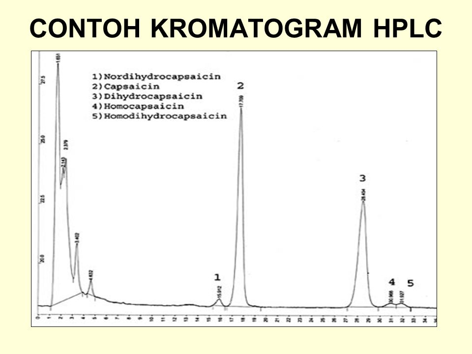 CONTOH KROMATOGRAM HPLC