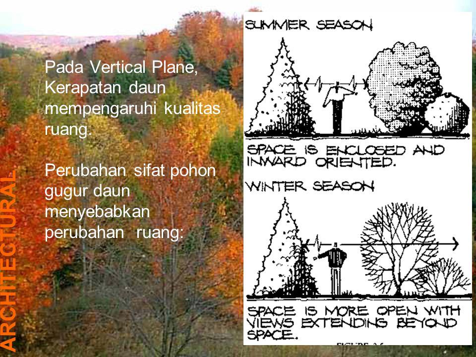 Pada Vertical Plane, Kerapatan daun mempengaruhi kualitas ruang.