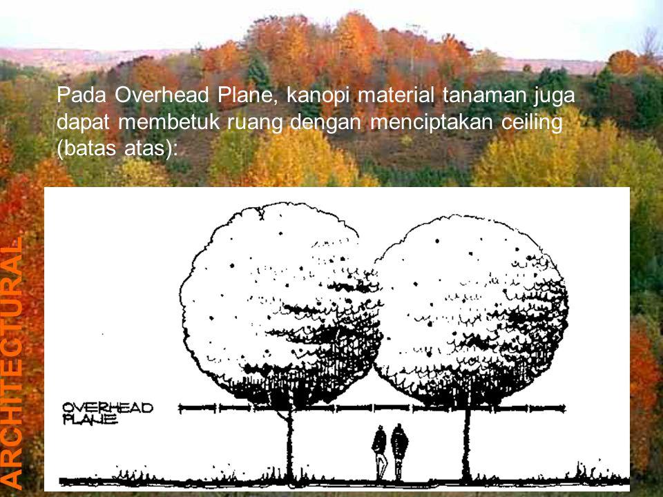 Pada Overhead Plane, kanopi material tanaman juga dapat membetuk ruang dengan menciptakan ceiling (batas atas): ARCHITECTURAL