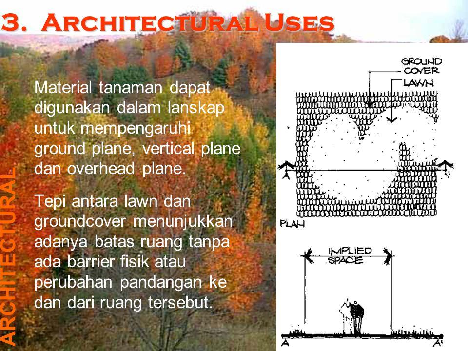 Pada posisi vertical plane, material tanaman dapat mempengaruhi persepsi terhadap ruang Ruang dapat terbentuk oleh massa tanaman.