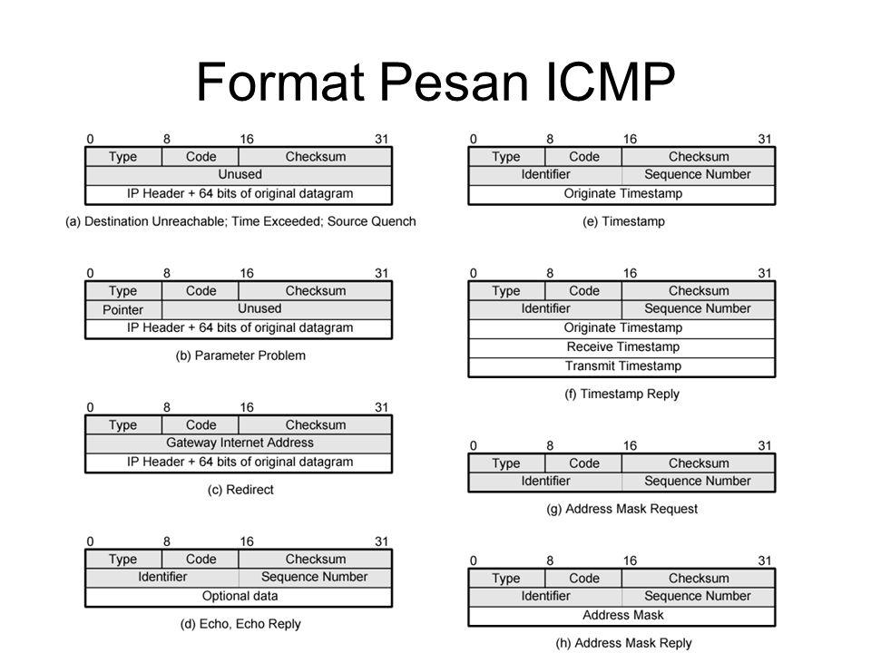 Format Pesan ICMP