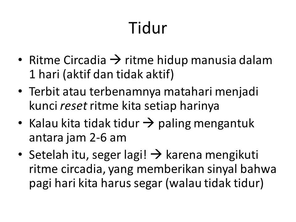 Tidur Ritme Circadia  ritme hidup manusia dalam 1 hari (aktif dan tidak aktif) Terbit atau terbenamnya matahari menjadi kunci reset ritme kita setiap harinya Kalau kita tidak tidur  paling mengantuk antara jam 2-6 am Setelah itu, seger lagi.