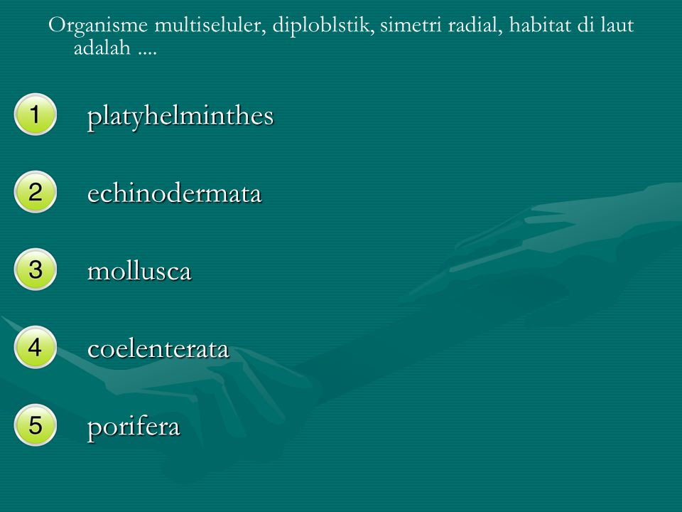 Organisme multiseluler, diploblstik, simetri radial, habitat di laut adalah.... platyhelminthes echinodermata mollusca coelenterata porifera