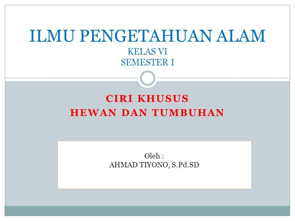 CIRI KHUSUS HEWAN DAN TUMBUHAN ILMU PENGETAHUAN ALAM KELAS VI SEMESTER I Oleh : AHMAD TIYONO, S.Pd.SD