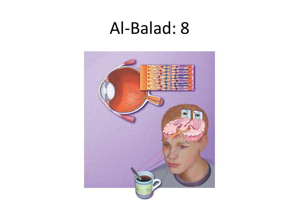 Al-Balad: 8