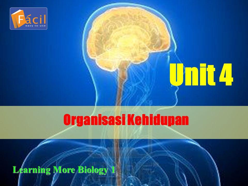 Sel Jaringan Organ Sistem Organ Organisme Apakah setiap sel penyusun berbagai jaringan dan organ pada manusia, hewan, dan tumbuhan sama.