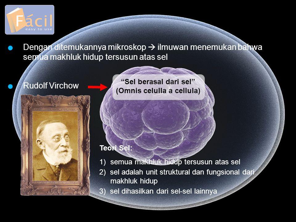Teori Sel: 1)semua makhluk hidup tersusun atas sel 3) sel dihasilkan dari sel-sel lainnya 2) sel adalah unit struktural dan fungsional dari makhluk hi