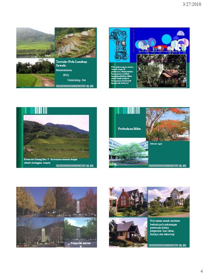 Hilir Tengah Hulu Terrain~Pola Lanskap Sawah: Mountaineous Hilly Undulating - flat > 10 m Gambar Profil Pohon dan Perdu di Pekarangan Tradisional (Poh