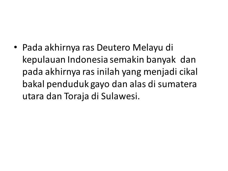 Pada akhirnya ras Deutero Melayu di kepulauan Indonesia semakin banyak dan pada akhirnya ras inilah yang menjadi cikal bakal penduduk gayo dan alas di