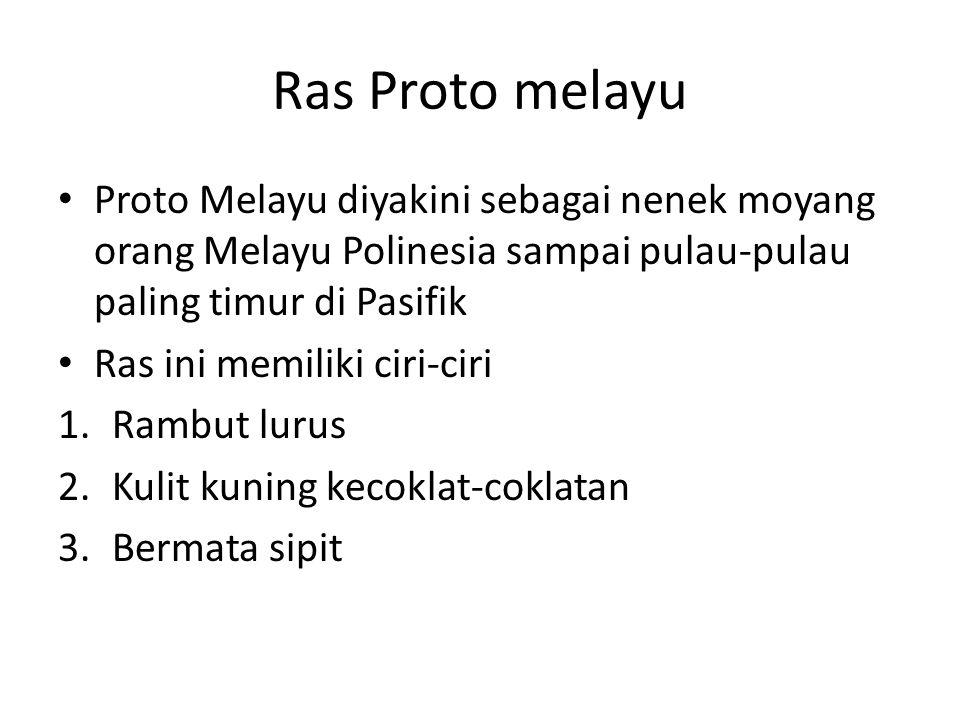 Ras Proto melayu Proto Melayu diyakini sebagai nenek moyang orang Melayu Polinesia sampai pulau-pulau paling timur di Pasifik Ras ini memiliki ciri-ci