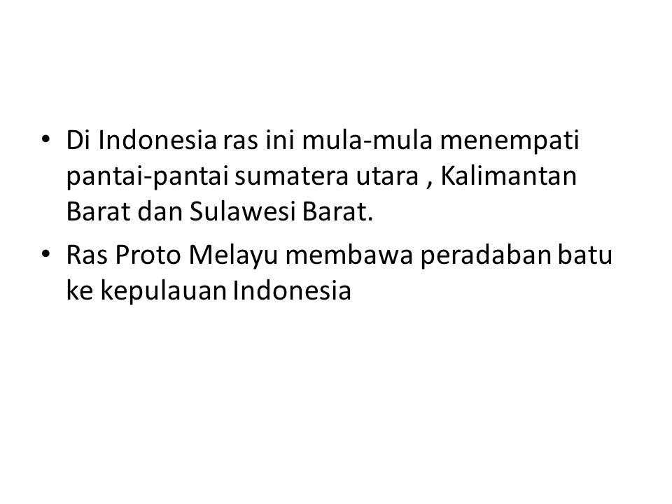 Di Indonesia ras ini mula-mula menempati pantai-pantai sumatera utara, Kalimantan Barat dan Sulawesi Barat. Ras Proto Melayu membawa peradaban batu ke