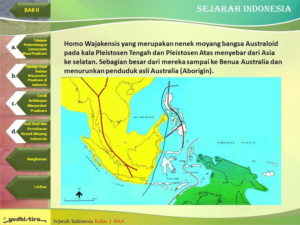 Homo Wajakensis yang merupakan nenek moyang bangsa Australoid pada kala Pleistosen Tengah dan Pleistosen Atas menyebar dari Asia ke selatan. Sebagian