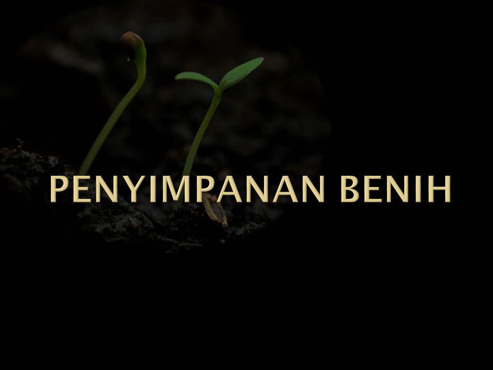  TUJUAN : mempertahankan viabilitas maksimum benih dalam suatu periode simpan tertentu  MAKSUD : menyediakan benih untuk musim tanam berikutnya atau pelestarian benih tanaman
