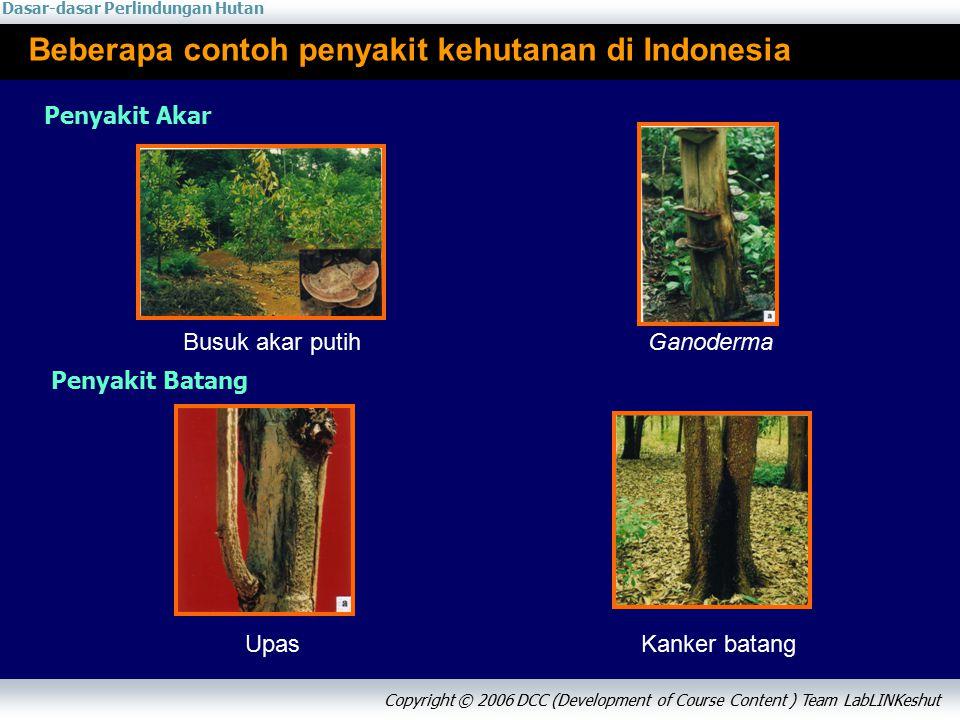 Dasar-dasar Perlindungan Hutan Copyright © 2006 DCC (Development of Course Content ) Team LabLINKeshut Beberapa contoh penyakit kehutanan di Indonesia Penyakit Akar Penyakit Batang Busuk akar putihGanoderma Upas Kanker batang