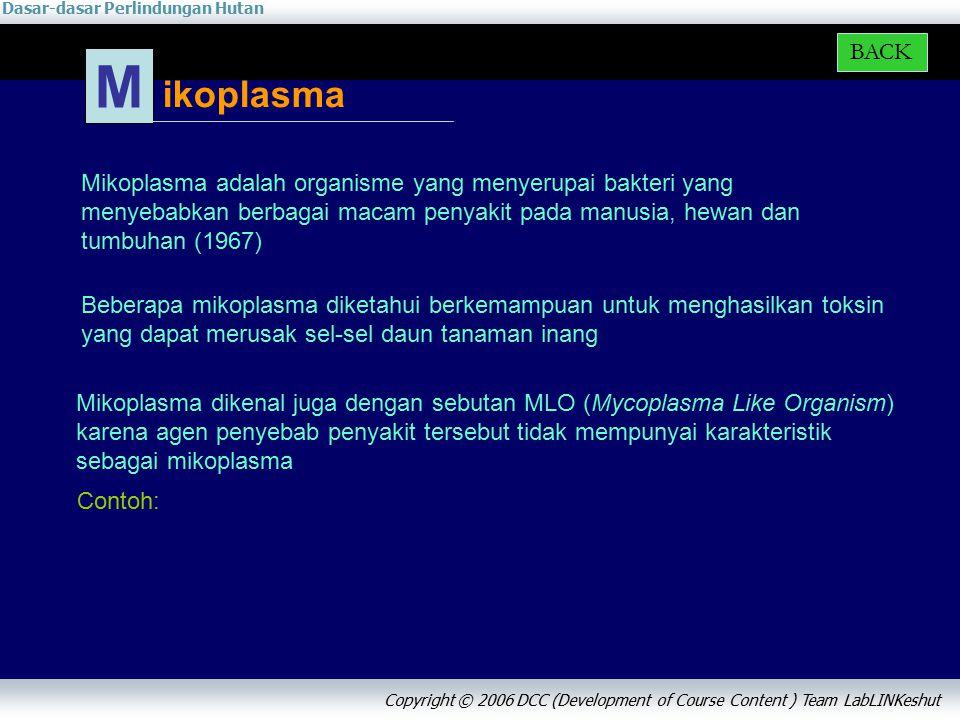 Dasar-dasar Perlindungan Hutan Copyright © 2006 DCC (Development of Course Content ) Team LabLINKeshut Beberapa mikoplasma diketahui berkemampuan untuk menghasilkan toksin yang dapat merusak sel-sel daun tanaman inang ikoplasma M BACK Mikoplasma adalah organisme yang menyerupai bakteri yang menyebabkan berbagai macam penyakit pada manusia, hewan dan tumbuhan (1967) Mikoplasma dikenal juga dengan sebutan MLO (Mycoplasma Like Organism) karena agen penyebab penyakit tersebut tidak mempunyai karakteristik sebagai mikoplasma Contoh: