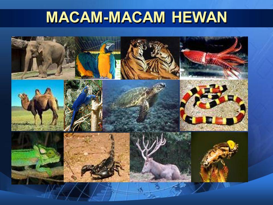 Penyesuaian Tingkah Laku terhadap Lingkungan  Beberapa jenis hewan ada yang menyesuaikan diri dengan lingkungan dengan cara mengubah tingkah laku.