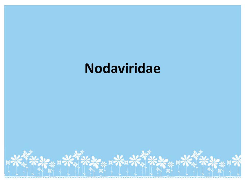 Nodaviridae