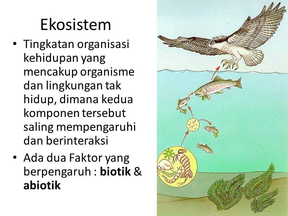 Ekosistem Tingkatan organisasi kehidupan yang mencakup organisme dan lingkungan tak hidup, dimana kedua komponen tersebut saling mempengaruhi dan beri