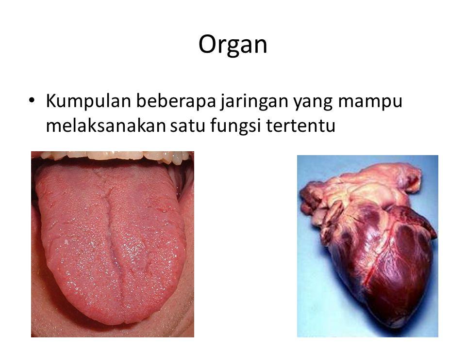 Manfaat Biologi