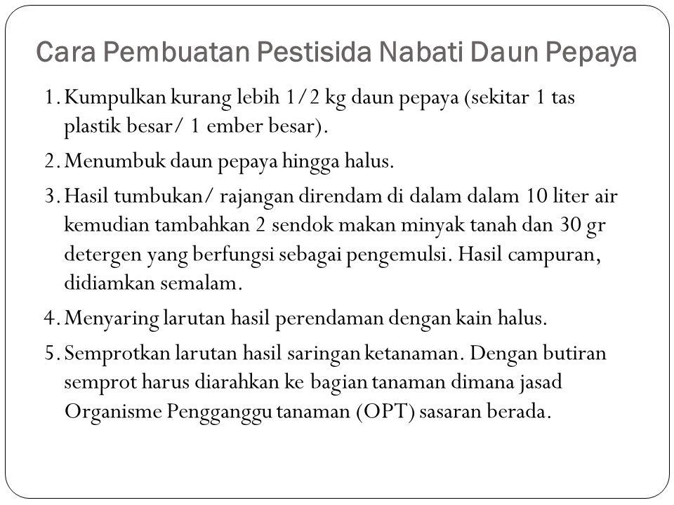 Cara Pembuatan Pestisida Nabati Daun Pepaya 1.Kumpulkan kurang lebih 1/2 kg daun pepaya (sekitar 1 tas plastik besar/ 1 ember besar). 2.Menumbuk daun