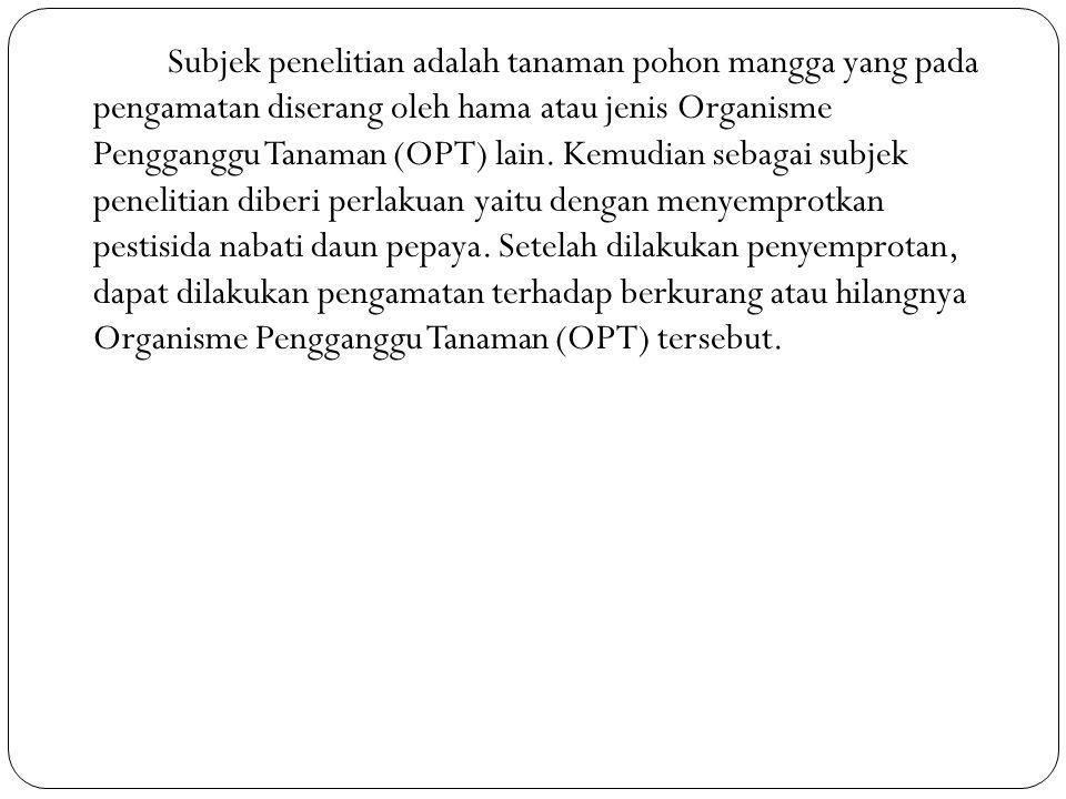 Subjek penelitian adalah tanaman pohon mangga yang pada pengamatan diserang oleh hama atau jenis Organisme Pengganggu Tanaman (OPT) lain. Kemudian seb