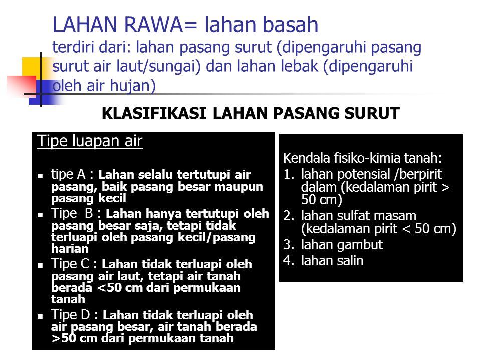 Luas Lahan rawa di Indonesia (ha) wilayahtotalPoten sial Direkla masi TotalDitana mi Sumatera Jawa Madura Kalimantan Sulawesi Maluku Papua 7.141.200 68000 5.938.000 371.300 236.500 6.415.400 3.927.000 - 2.795.000 - 2.808.000 2.784.000 - 1.402.000 - 6079000 - 6437000 - 413000 - 316900 - jumlah20.192.1009.530.0004.186.00013.283.000729.900 Lahan Pasang surutLahan lebak Sumber: Alihamsyah (2004)
