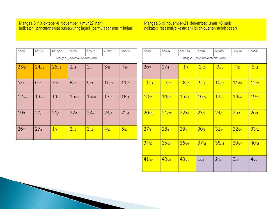 b.memanen jagung paling baik pada mangsa 7(22 Des.- 2 Feb).