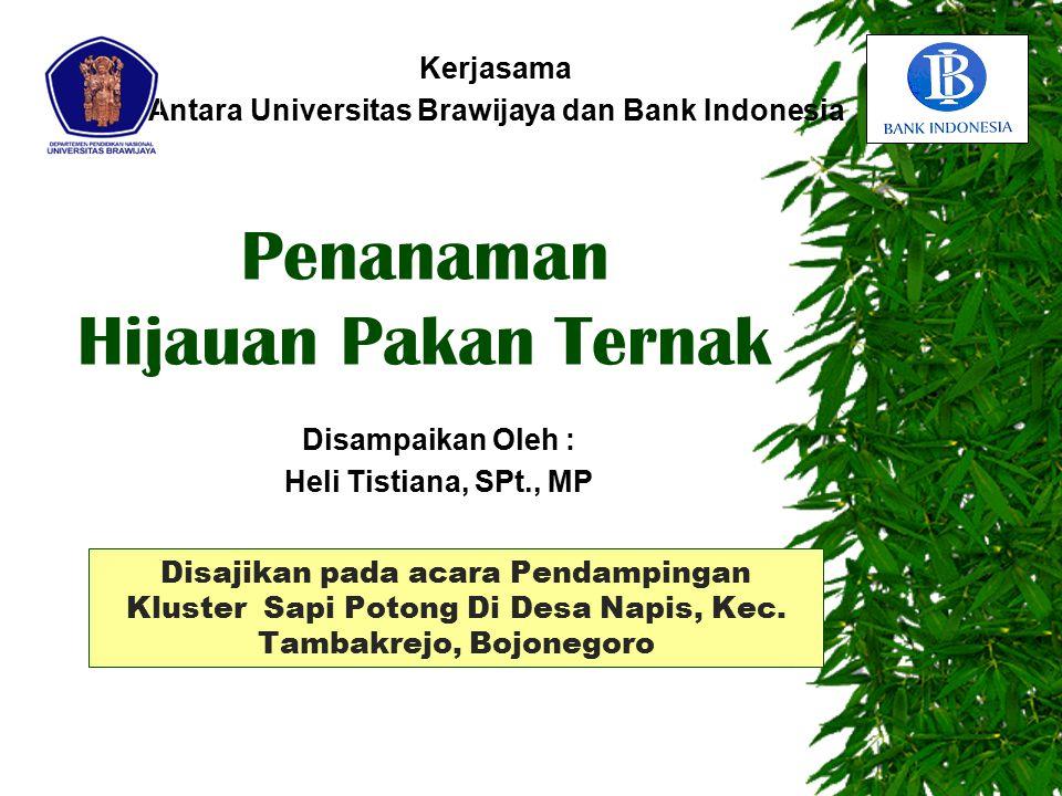 Disajikan pada acara Pendampingan Kluster Sapi Potong Di Desa Napis, Kec. Tambakrejo, Bojonegoro Kerjasama Antara Universitas Brawijaya dan Bank Indon