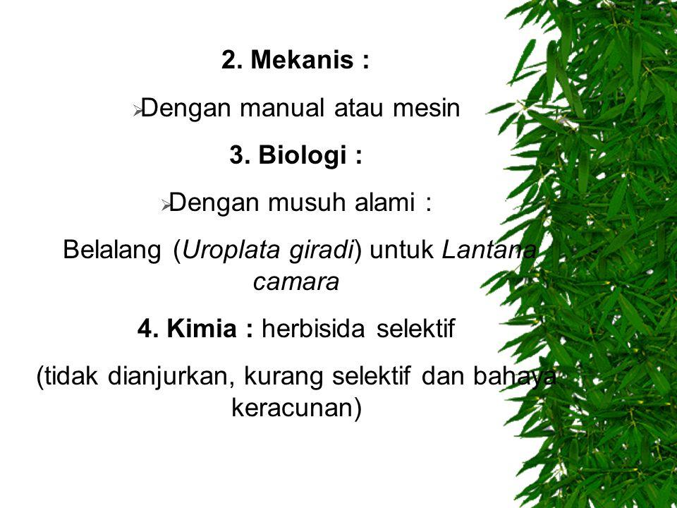 2. Mekanis :  Dengan manual atau mesin 3. Biologi :  Dengan musuh alami : Belalang (Uroplata giradi) untuk Lantana camara 4. Kimia : herbisida selek
