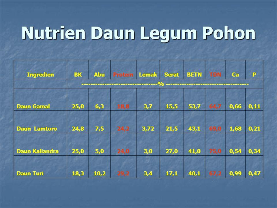 Nutrien Daun Legum Pohon IngredienBKAbuProteinLemakSeratBETNTDNCaP ---------------------------------% ------------------------------------ Daun Gamal25,06,318,83,715,553,764,70,660,11 Daun Lamtoro24,87,524,23,7221,543,169,01,680,21 Daun Kaliandra25,05,024,03,027,041,075,00,540,34 Daun Turi18,310,229,23,417,140,167,20,990,47