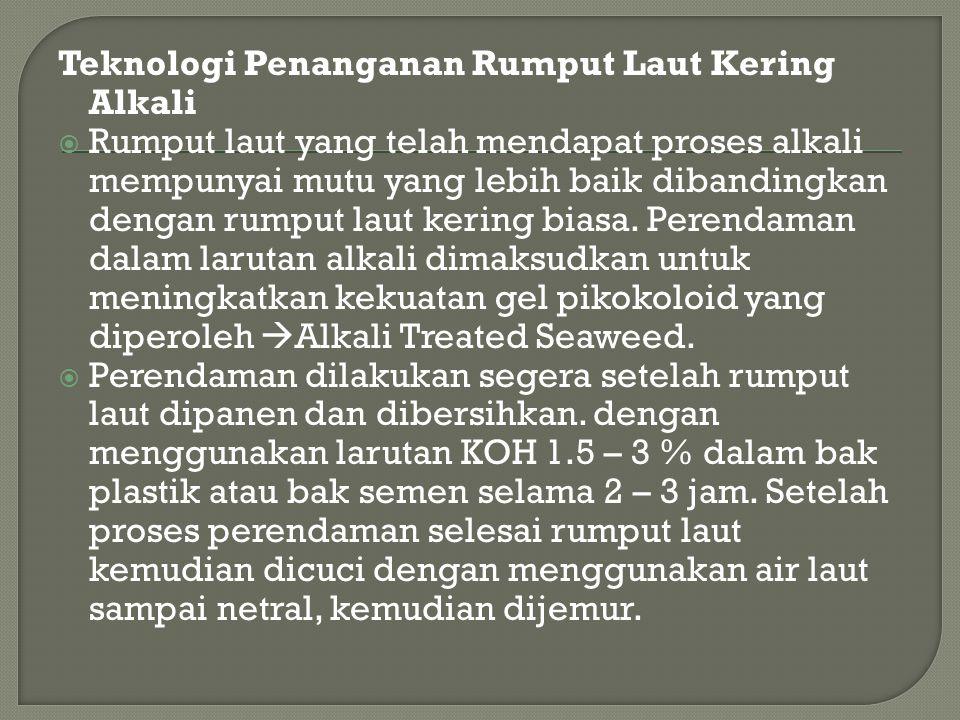 Teknologi Penanganan Rumput Laut Kering Alkali  Rumput laut yang telah mendapat proses alkali mempunyai mutu yang lebih baik dibandingkan dengan rump