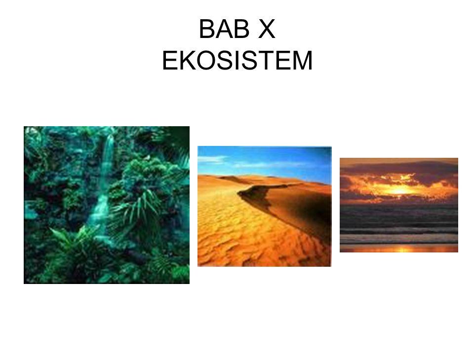 BAB X EKOSISTEM