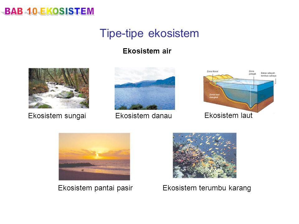Tipe-tipe ekosistem Ekosistem air Ekosistem sungaiEkosistem danau Ekosistem laut Ekosistem pantai pasirEkosistem terumbu karang