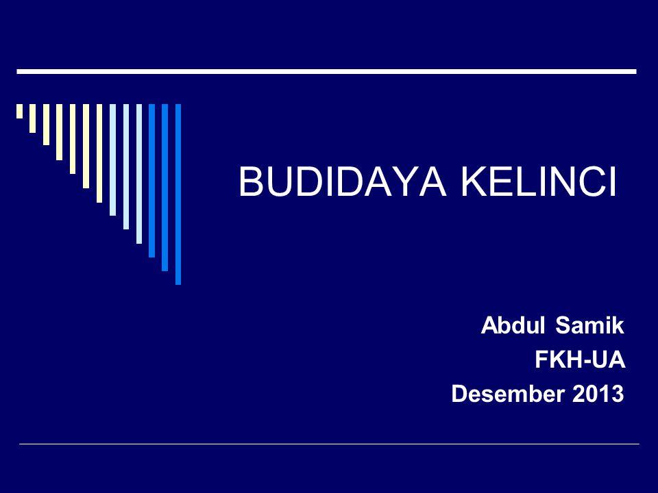 BUDIDAYA KELINCI Abdul Samik FKH-UA Desember 2013