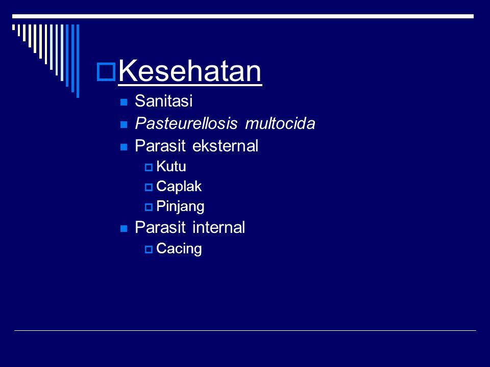  Kesehatan Sanitasi Pasteurellosis multocida Parasit eksternal  Kutu  Caplak  Pinjang Parasit internal  Cacing