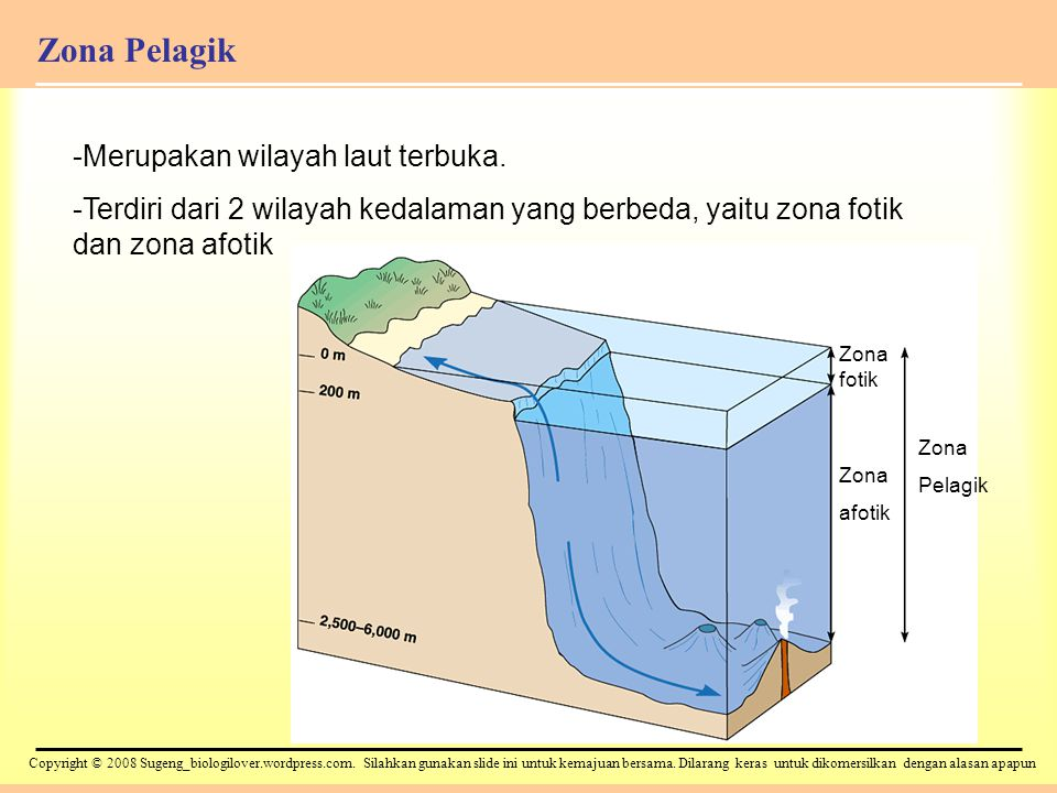 Copyright © 2008 Sugeng_biologilover.wordpress.com.