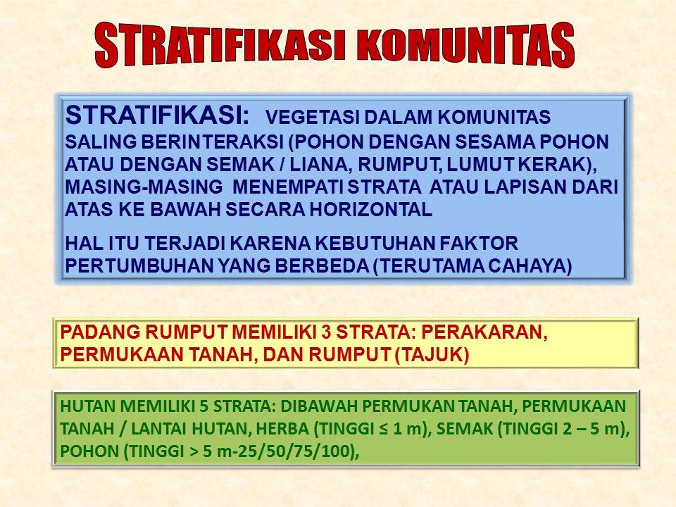 STRATIFIKASI: VEGETASI DALAM KOMUNITAS SALING BERINTERAKSI (POHON DENGAN SESAMA POHON ATAU DENGAN SEMAK / LIANA, RUMPUT, LUMUT KERAK), MASING-MASING MENEMPATI STRATA ATAU LAPISAN DARI ATAS KE BAWAH SECARA HORIZONTAL HAL ITU TERJADI KARENA KEBUTUHAN FAKTOR PERTUMBUHAN YANG BERBEDA (TERUTAMA CAHAYA) PADANG RUMPUT MEMILIKI 3 STRATA: PERAKARAN, PERMUKAAN TANAH, DAN RUMPUT (TAJUK) HUTAN MEMILIKI 5 STRATA: DIBAWAH PERMUKAN TANAH, PERMUKAAN TANAH / LANTAI HUTAN, HERBA (TINGGI ≤ 1 m), SEMAK (TINGGI 2 – 5 m), POHON (TINGGI > 5 m-25/50/75/100), HUTAN MEMILIKI 5 STRATA: DIBAWAH PERMUKAN TANAH, PERMUKAAN TANAH / LANTAI HUTAN, HERBA (TINGGI ≤ 1 m), SEMAK (TINGGI 2 – 5 m), POHON (TINGGI > 5 m-25/50/75/100),