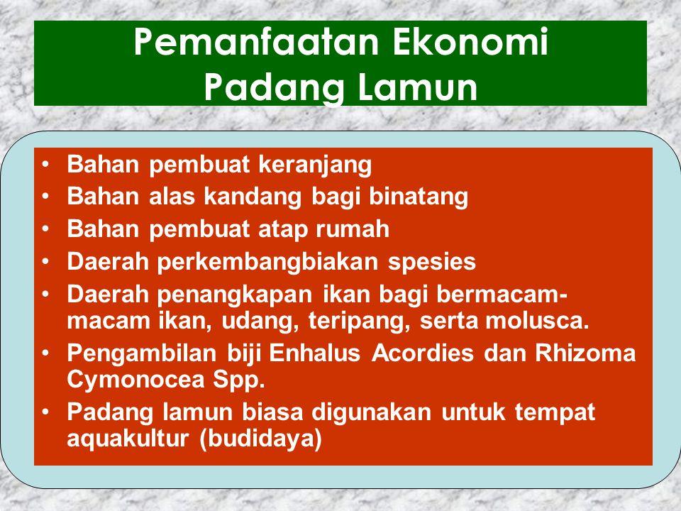 Penyebab & Akibat Kerusakan Ekosistem Padang Lamun (Dahuri, dkk, 1996) Pengerukan : - Kerusakan fisik padang lamun dan peningkatan kekeruh- an air - M